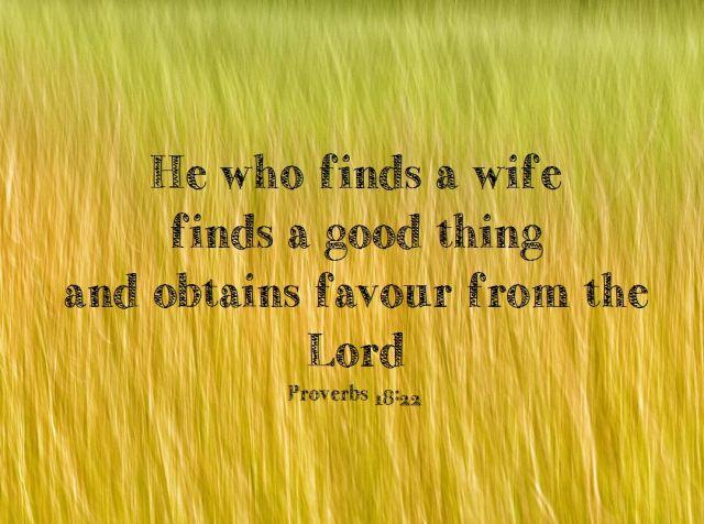 Proverbs 18 22